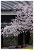 2016 九州熊本城:2016日本九州_0898.JPG
