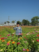 2012 城市花田.春遊橋頭:20120204 橋頭0011.JPG