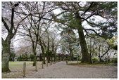2016 九州水前寺:2016日本九州_1015.JPG