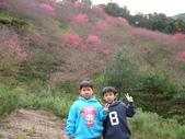 2012 埔里-霧社-廬山:20120205 廬山0010.JPG