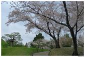 2016 九州水前寺:2016日本九州_1019.JPG