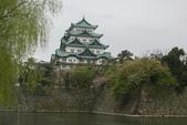 2010 京阪神賞櫻行~名古屋:DSC03874.JPG