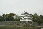 2010 京阪神賞櫻行~名古屋:DSC03876.JPG
