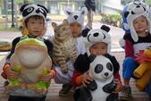 紙熊貓展:DSC02671.JPG