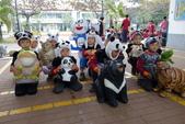 紙熊貓展:DSC02672.JPG