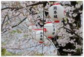 2016 九州熊本城:2016日本九州_0890.JPG