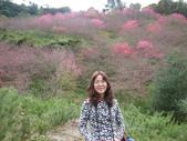 2012 埔里-霧社-廬山:20120205 廬山0015.JPG