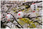 2016 九州熊本城:2016日本九州_0889.JPG