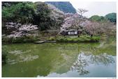 2016 九州御船山樂園:2016日本九州_0696.JPG