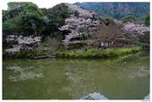 2016 九州御船山樂園:2016日本九州_0699.JPG