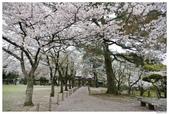 2016 九州水前寺:2016日本九州_1012.JPG