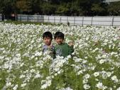 2012 城市花田.春遊橋頭:20120204 橋頭0025.JPG