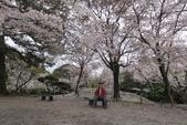 2016 九州水前寺:2016日本九州_1008.JPG