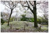 2016 九州水前寺:2016日本九州_1014.JPG