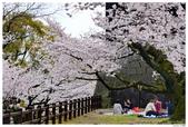 2016 九州熊本城:2016日本九州_0901.JPG