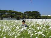 2012 城市花田.春遊橋頭:20120204 橋頭0027.JPG