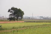 2015 台一農場:DSC01490.JPG
