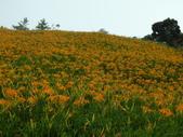 2011花東行-太麻里-六十石山:2011花東153.JPG