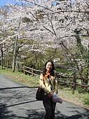 2010 京阪神賞櫻行~養老之瀧:DSC00204.jpg