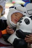 紙熊貓展:DSC02676.JPG