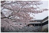 2016 九州熊本城:2016日本九州_0893.JPG