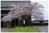 2016 九州熊本城:2016日本九州_0897.JPG