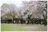 2016 九州水前寺:2016日本九州_1010.JPG