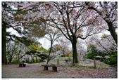 2016 九州水前寺:2016日本九州_1018.JPG