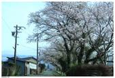 2016 九州阿蘇溫泉:2016日本九州_1028.JPG