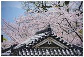 2016 九州熊本城:2016日本九州_0909.JPG