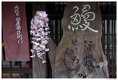 2016 九州柳川:2016日本九州_0819.JPG