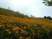 2011花東行-太麻里-六十石山:2011花東065.JPG