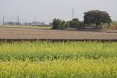 2015 台一農場:DSC01500.JPG