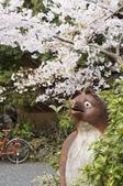 2013 圓山公園: