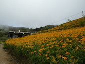 2011花東行-太麻里-六十石山:2011花東068.JPG