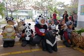 紙熊貓展:DSC02670.JPG
