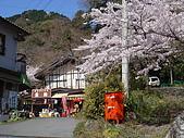 2010 京阪神賞櫻行~養老之瀧:DSC02045.JPG