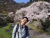 2010 京阪神賞櫻行~養老之瀧:DSC02053.JPG