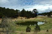 有如世外桃源一般的福壽山農場:DSC_0051.jpg