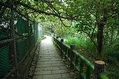 風景「蕨」佳的軍艦岩自然步道:DSC_0016.jpg