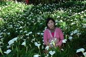 有如世外桃源一般的福壽山農場:DSC_0038.jpg