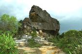 風景「蕨」佳的軍艦岩自然步道:DSC_0104.jpg