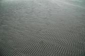 流動的國土---外傘頂洲:DSC_0486.jpg