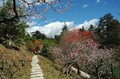 有如世外桃源一般的福壽山農場:DSC_0035.JPG