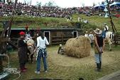 綠草如茵、綿羊成群的清境農場:DSC_0239.jpg