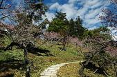 有如世外桃源一般的福壽山農場:DSC_0036.jpg