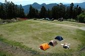 綠草如茵、綿羊成群的清境農場:DSC_0194.jpg