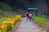 國內旅遊--屏東縣:涼山遊憩區-14.JPG