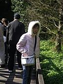 福山植物園:PC170981
