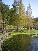福山植物園:PC170983